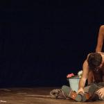 Bognetti-Hudgkinson | The reader